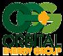 OEG's Company logo