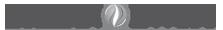 Orlean Invest's Company logo