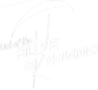 Out Of The Blue Skydiving's Company logo