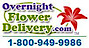 Overnight Flower Delivery Logo