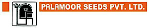 Palamoor Seeds's Company logo