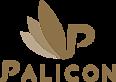 Palicon's Company logo