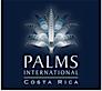 Palms International's Company logo
