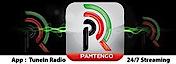 Pamtengo Radio's Company logo