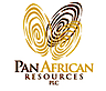 Pan African Resources's Company logo