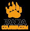 Pandacourier's Company logo