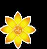 Partners In Micro-development - Pimd's Company logo