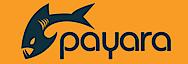 Payara's Company logo