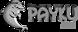 Plaza Amusement's Competitor - Payku logo