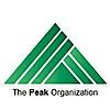 Peak Audit's Company logo