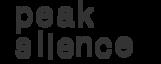 Peak Silence's Company logo