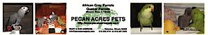 Pecan Acres Pets's Company logo