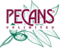 Bostick Fresh Pecans's Competitor - Pecans Unlimited logo