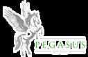 Pegasus Agri-tech's Company logo