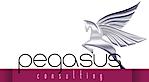 Pegasus Consulting's Company logo