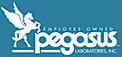 Pegasus Labs's Company logo