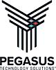Pegasus Technology Solutions's Company logo