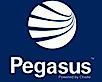Pegasus Management Pty Ltd's Company logo