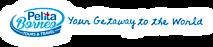 Pelita Borneo Tours's Company logo
