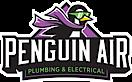 Penguin Air's Company logo