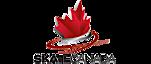 Petawawa Skating Club's Company logo