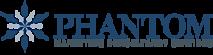 Phantom Marketing Consultancy's Company logo