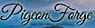 Silver Dollar City's Competitor - Pigeon Forge logo