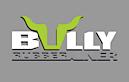 Bullyliner's Company logo