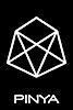 Pinya's Company logo