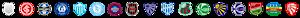 Pioneiro's Company logo