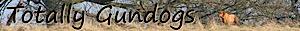 Pippa Mattinson's Company logo