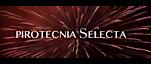 Pirotecnia Selecta's Company logo