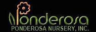 Ponderosa Nursery's Company logo