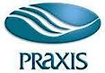 Praxis Companies's Company logo