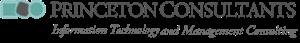 Princeton Consultants, Inc.'s Company logo