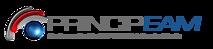 Principeam's Company logo
