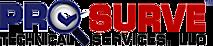 Pro-surve Technical Services's Company logo