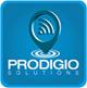 Prodigio Solutions's Company logo