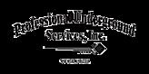 Professional Underground Services's Company logo