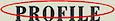 Bluetechcorp's Competitor - Profilefilms logo