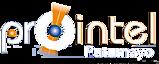Prointel Ltda's Company logo