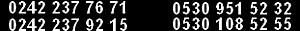Propointsports's Company logo