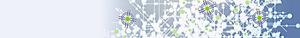 Protolife's Company logo