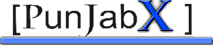 Punjabx's Company logo