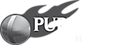 Pure Steel Shop's Company logo