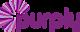 Art of Beauty, Inc.'s Competitor - Purply logo