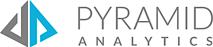 Pyramid Analytics's Company logo