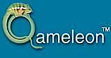Qameleon Technology's Company logo