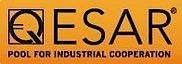 Qesar's Company logo