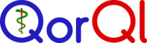 QorQl's Company logo